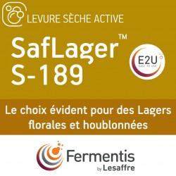 SafLager S-189