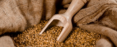 Nos produits locaux et surtout 100% Bio